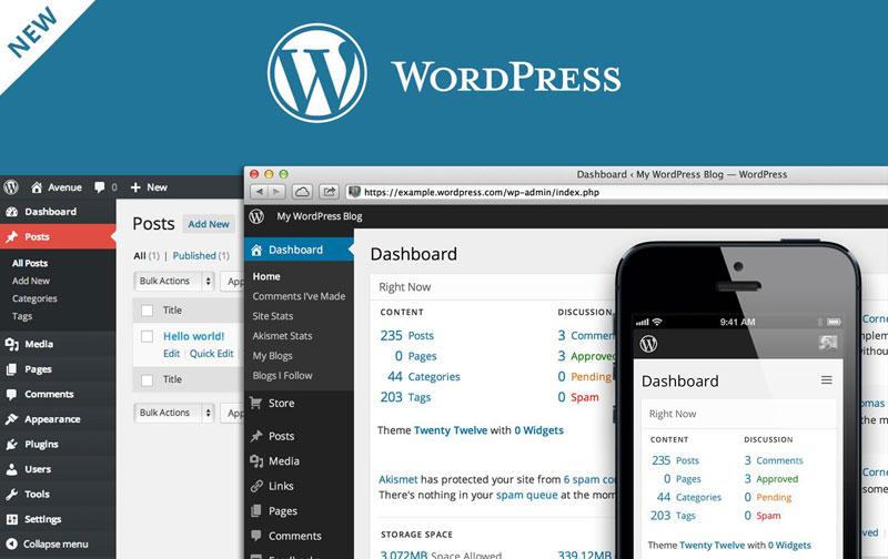 Lima Tips Memilih Tema WordPress yang Tepat untuk Situs Web Anda